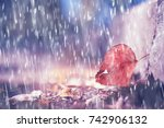autumn park  rainy background   ...   Shutterstock . vector #742906132