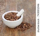 white willow bark herb used in... | Shutterstock . vector #743001046