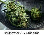 close up of dried medical...   Shutterstock . vector #743055805