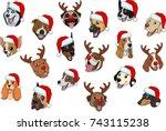 vector illustration set of...   Shutterstock .eps vector #743115238