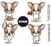 character design of brown... | Shutterstock .eps vector #743132236