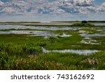 Salt Marsh Pond Leading To...