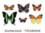 set butterfly isolated on a... | Shutterstock . vector #743184646