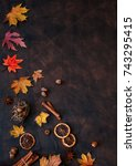 autumn background with candied... | Shutterstock . vector #743295415
