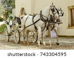 Horse Carriage Vienna
