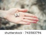 woman's hand holding a seashell ... | Shutterstock . vector #743583796