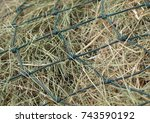 Qualitative Hay Of Cereal Herb...