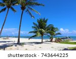 palm trees on beach in caye... | Shutterstock . vector #743644225