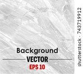 white marble vector background.  | Shutterstock .eps vector #743719912