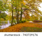 autumn forest scenery with rays ... | Shutterstock . vector #743729176