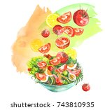 a plate of vegetable salad ... | Shutterstock . vector #743810935