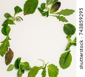 round frame of different salad... | Shutterstock . vector #743859295