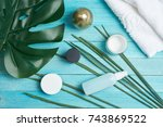 cream for skin care  palm leaf  ... | Shutterstock . vector #743869522