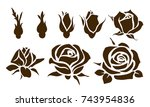 buds and flowers. vector rose... | Shutterstock .eps vector #743954836