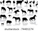 Animal Songs [Reflections]