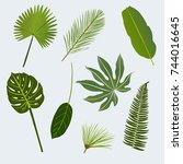 various tropic leaves | Shutterstock .eps vector #744016645