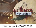 hello november | Shutterstock . vector #744020518