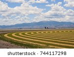 A Hay Field In The Agricultural ...