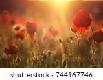 close up in poppy field and sun | Shutterstock . vector #744167746