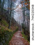 first autumn days into a foggy... | Shutterstock . vector #744220348