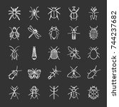 insects chalk icons set. bugs.... | Shutterstock .eps vector #744237682