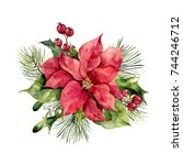 watercolor poinsettia with... | Shutterstock . vector #744246712