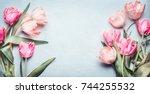 beautiful tulips in pink pastel ... | Shutterstock . vector #744255532