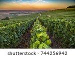 champagne region in france. a... | Shutterstock . vector #744256942
