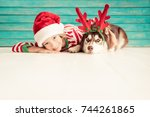 happy child and dog on... | Shutterstock . vector #744261865