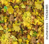 autumn pattern background.... | Shutterstock . vector #744266485