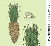 background with vetiver  root... | Shutterstock .eps vector #744369478