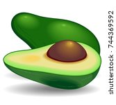 avocado exotic healthy fruit | Shutterstock .eps vector #744369592