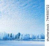 Winter Landscape With Frozen...