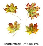 maple leaves. autumn collection.... | Shutterstock . vector #744501196