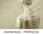female acupuncture model with... | Shutterstock . vector #744541216