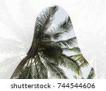 double exposure portrait of... | Shutterstock . vector #744544606