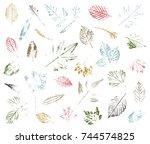 set of leaf imprints  natural... | Shutterstock .eps vector #744574825