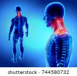 3d illustration of cervical... | Shutterstock . vector #744580732