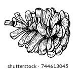 pine cone on white background.... | Shutterstock .eps vector #744613045