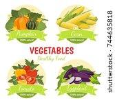 vector illustration with... | Shutterstock .eps vector #744635818