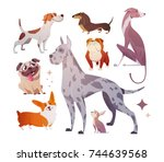 cartoon dogs of different... | Shutterstock .eps vector #744639568