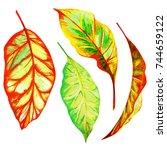 set of autumn decorative... | Shutterstock . vector #744659122