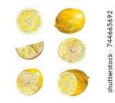 hand drawn watercolor set.... | Shutterstock . vector #744665692