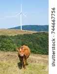 Small photo of Livestock farming in the mountains. Ecological breeding of animals. Wind turbine, alternative energy.