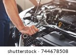 picture showing muscular car... | Shutterstock . vector #744678508