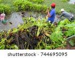 chiang yuen  mahasarakham  ...   Shutterstock . vector #744695095