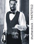 sommelier holding wine bottle... | Shutterstock . vector #744707512