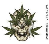 rastaman skull with cannabis... | Shutterstock .eps vector #744762196