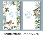 vector vintage banners with... | Shutterstock .eps vector #744772378