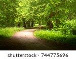 way | Shutterstock . vector #744775696